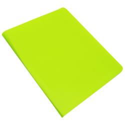 Vcolor Neon Display Book Porfolio-100 Pocket