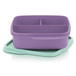 Purple Divided Square Lunch Box
