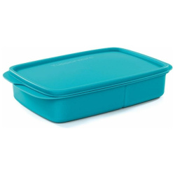 Turquoise Divided Lunch Box