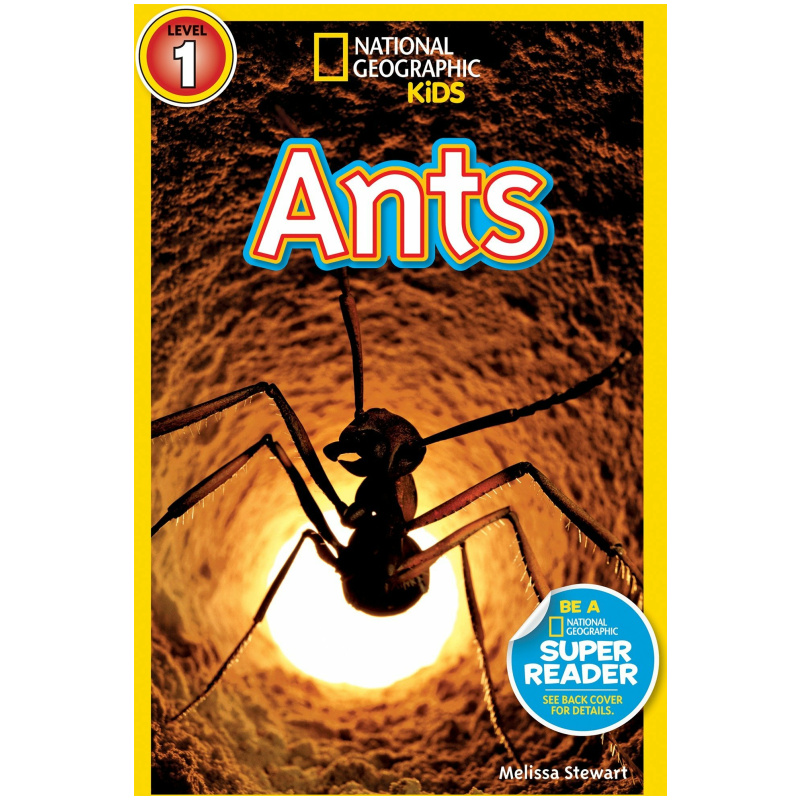 National Geographic Book - Ants