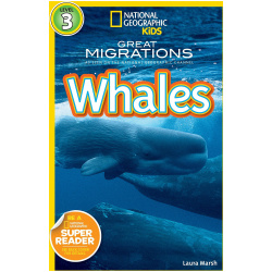 National Geographic Book - Whales