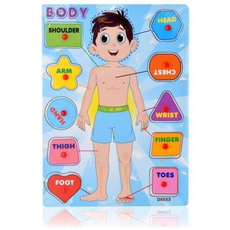 Wood Puzzle - Body Parts Boy