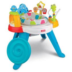 Baby Move Activity Center